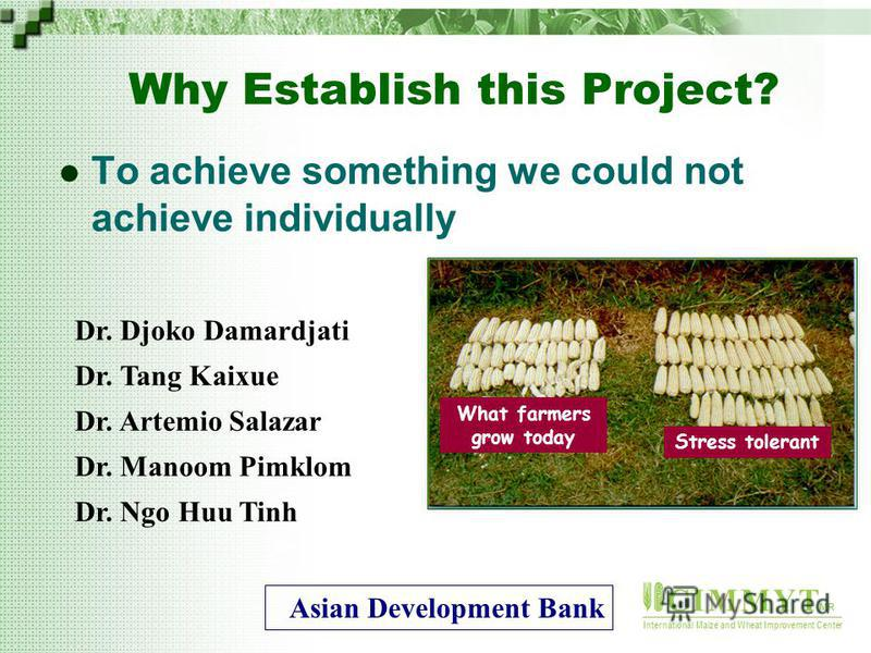 C I M M Y T MR International Maize and Wheat Improvement Center Why Establish this Project? To achieve something we could not achieve individually What farmers grow today Stress tolerant Dr. Djoko Damardjati Dr. Tang Kaixue Dr. Artemio Salazar Dr. Ma