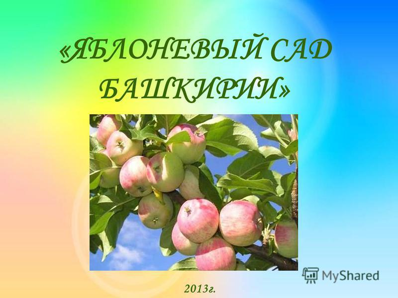 «ЯБЛОНЕВЫЙ САД БАШКИРИИ» 2013 г.