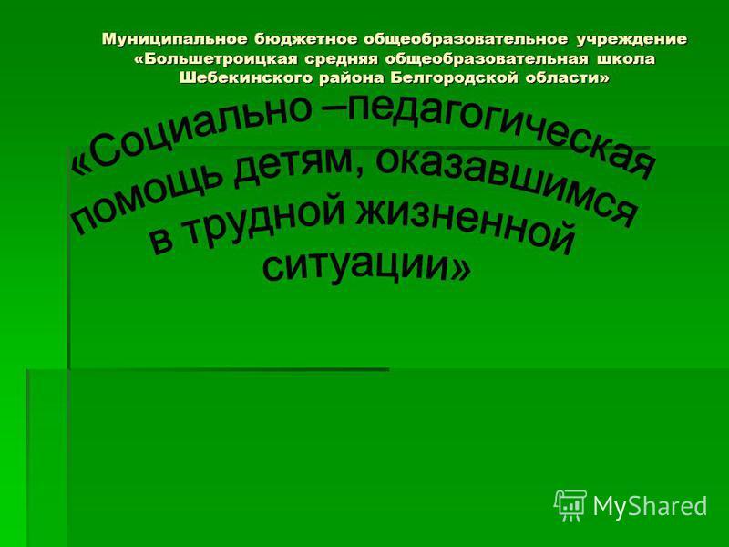 Муниципальное бюджетное общеобразовательное учреждение «Большетроицкая средняя общеобразовательная школа Шебекинского района Белгородской области»