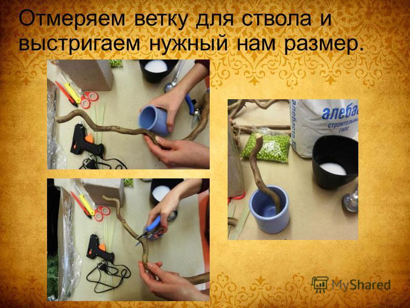Отмеряем ветку для ствола и выстригаем нужный нам размер.