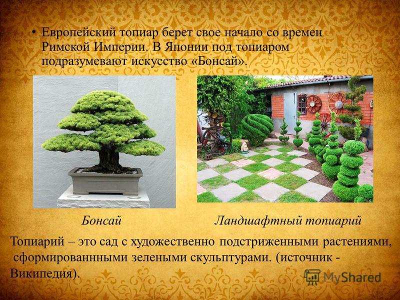 Европейский топиар берет свое начало со времен Римской Империи. В Японии под топиаром подразумевают искусство «Бонсай». Бонсай Ландшафтный топиарий Топиарий – это сад с художественно подстриженными растениями, сформированными зелеными скульптурами. (