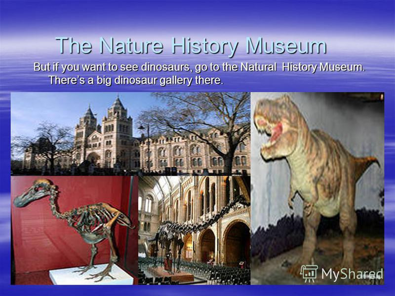 The Nature History Museum The Nature History Museum But if you want to see dinosaurs, go to the Natural History Museum. Theres a big dinosaur gallery there.
