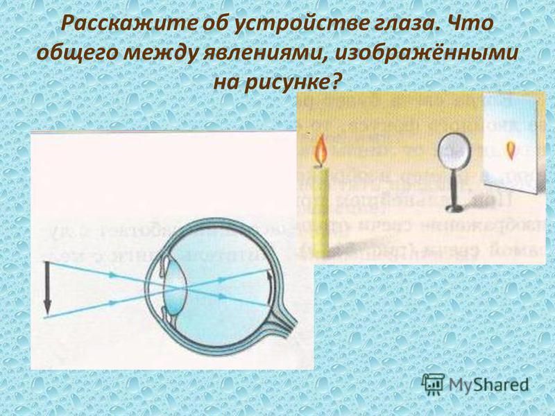 Расскажите об устройстве глаза. Что общего между явлениями, изображёнными на рисунке?
