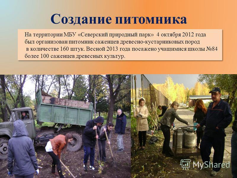 Создание питомника На территории МБУ «Северский природный парк» 4 октября 2012 года был организован питомник саженцев древесно-кустарниковых пород в количестве 160 штук. Весной 2013 года посажено учащимися школы 84 более 100 саженцев древесных культу
