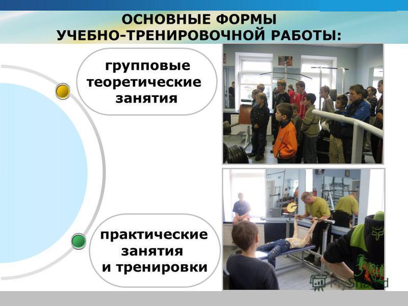 www.themegallery.com Company Logo ОСНОВНЫЕ ФОРМЫ УЧЕБНО-ТРЕНИРОВОЧНОЙ РАБОТЫ: практические занятия и тренировки групповые теоретические занятия