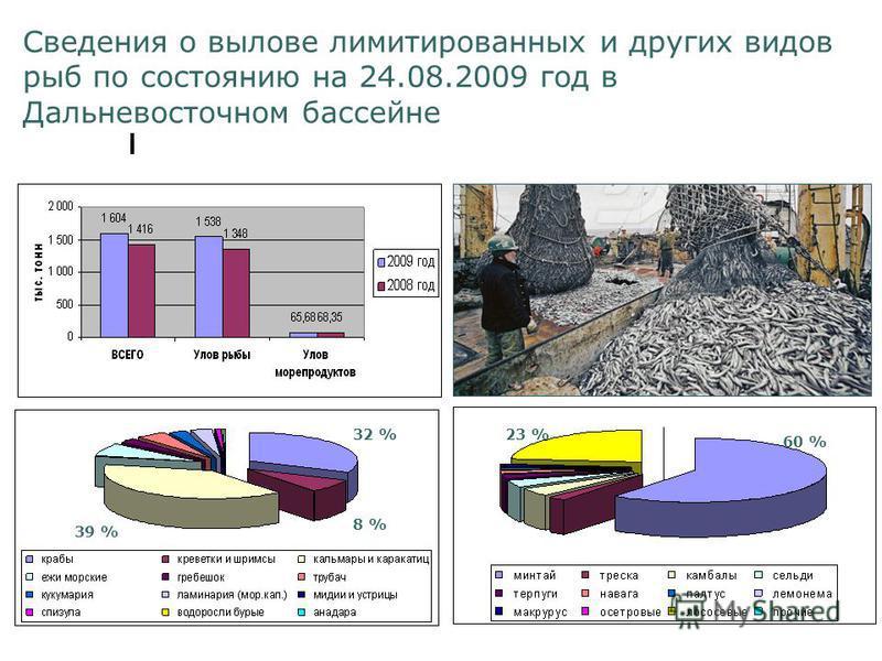 Сведения о вылове лимитированных и других видов рыб по состоянию на 24.08.2009 год в Дальневосточном бассейне 60 % 23 % 39 % 32 % 8 %