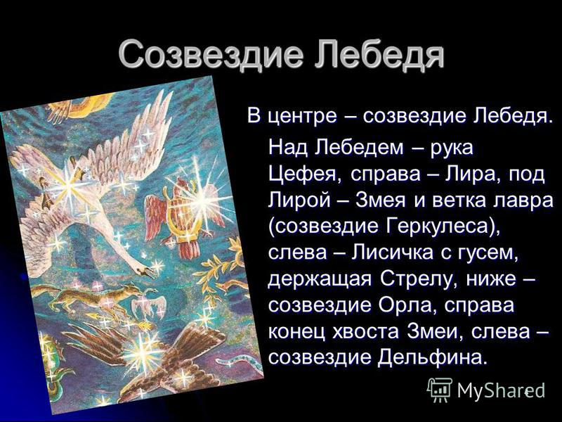 4 Созвездие Лебедя В центре – созвездие Лебедя. Над Лебедем – рука Цефея, справа – Лира, под Лирой – Змея и ветка лавра (созвездие Геркулеса), слева – Лисичка с гусем, держащая Стрелу, ниже – созвездие Орла, справа конец хвоста Змеи, слева – созвезди