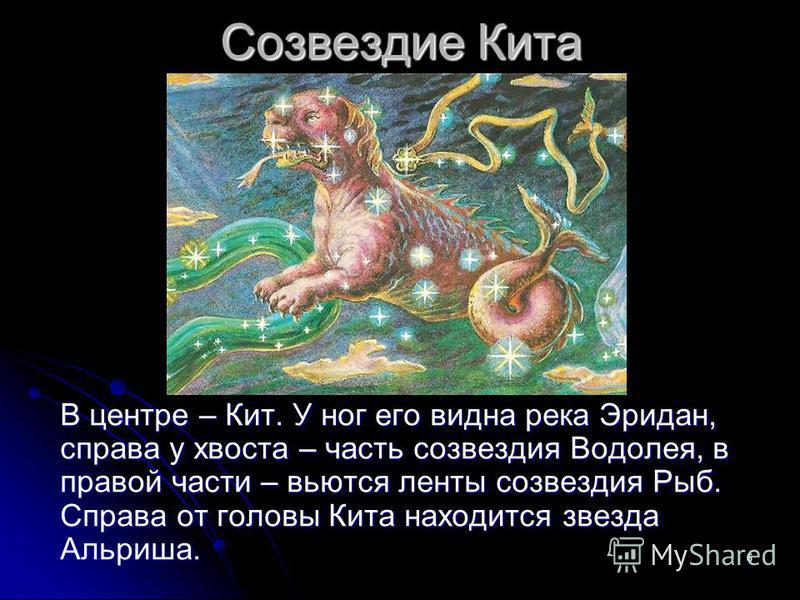 6 Созвездие Кита В центре – Кит. У ног его видна река Эридан, справа у хвоста – часть созвездия Водолея, в правой части – вьются ленты созвездия Рыб. Справа от головы Кита находится звезда Альриша.