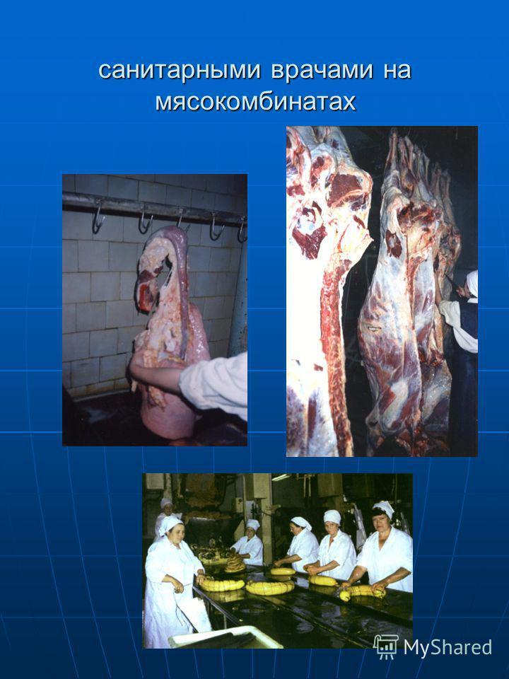 санитарными врачами на мясокомбинатах
