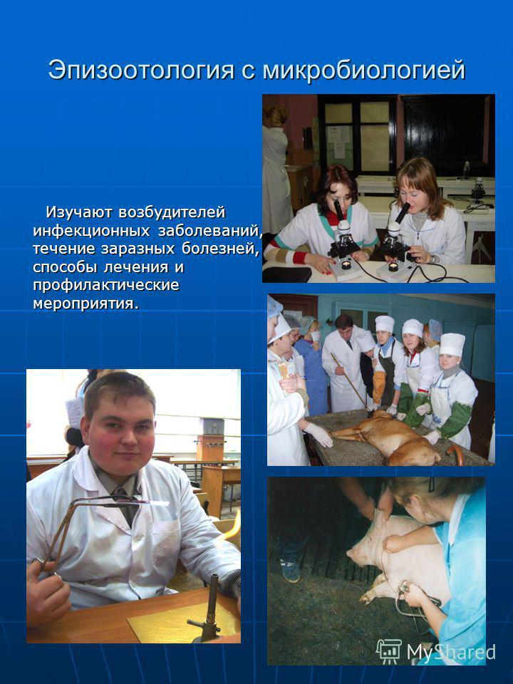 Эпизоотология с микробиологией Изучают возбудителей инфекционных заболеваний, течение заразных болезней, способы лечения и профилактические мероприятия.