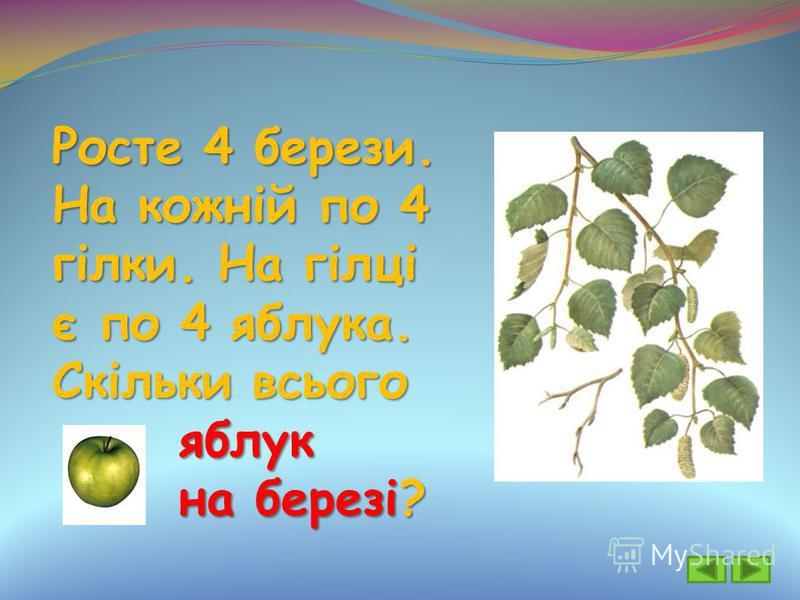Росте 4 берези. На кожній по 4 гілки. На гілці є по 4 яблука. Скільки всього яблук яблук на березі? на березі?