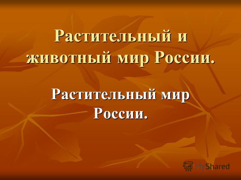 Растительный и животный мир России. Растительный мир России.