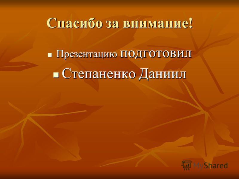 Спасибо за внимание! Презентацию подготовил Презентацию подготовил Степаненко Даниил Степаненко Даниил