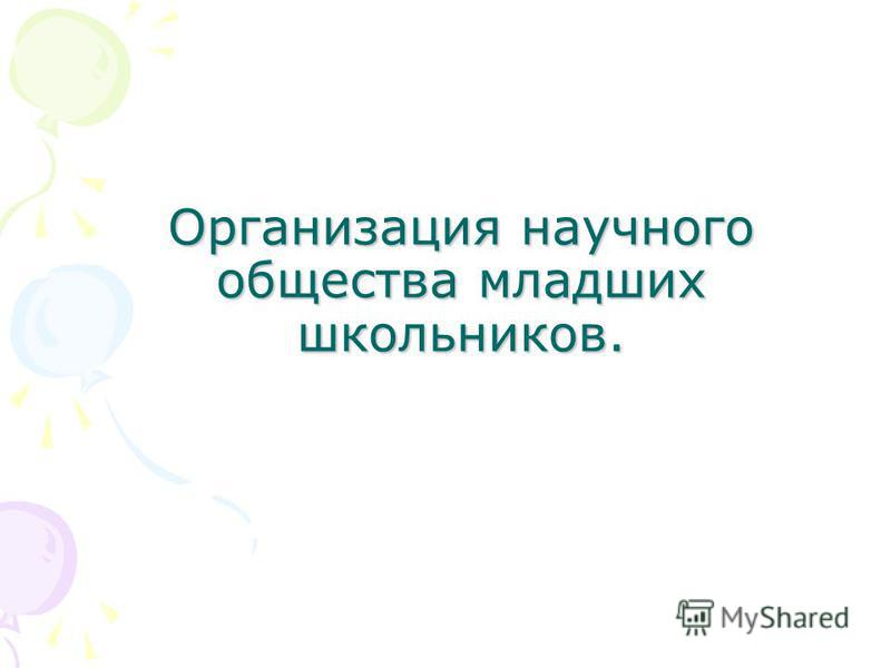 Организация научного общества младших школьников.