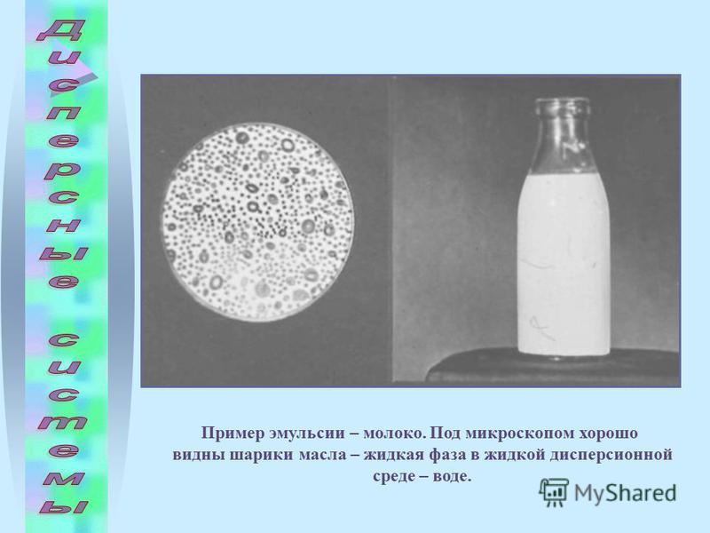 Пример эмульсии – молоко. Под микроскопом хорошо видны шарики масла – жидкая фаза в жидкой дисперсионной среде – воде.