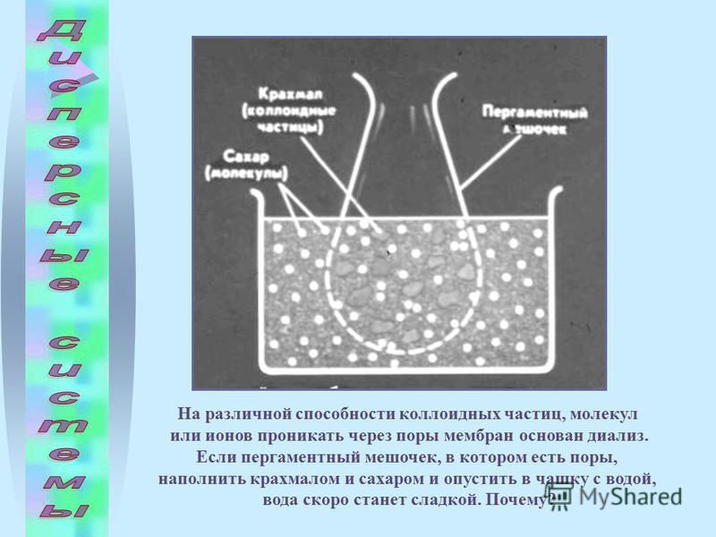 На различной способности коллоидных частиц, молекул или ионов проникать через поры мембран основан диализ. Если пергаментный мешочек, в котором есть поры, наполнить крахмалом и сахаром и опустить в чашку с водой, вода скоро станет сладкой. Почему?