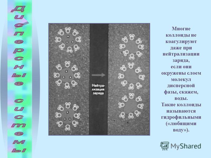 Многие коллоиды не коагулируют даже при нейтрализации заряда, если они окружены слоем молекул дисперсной фазы, скажем, воды. Такие коллоиды называются гидрофильными («любящими воду»).