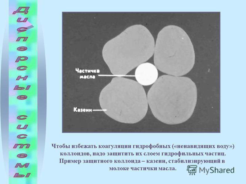 Чтобы избежать коагуляции гидрофобных («ненавидящих воду») коллоидов, надо защитить их слоем гидрофильных частиц. Пример защитного коллоида – казеин, стабилизирующий в молоке частички масла.