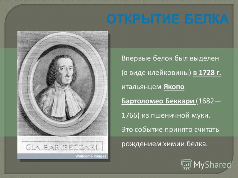 ОТКРЫТИЕ БЕЛКА Впервые белок был выделен (в виде клейковины) в 1728 г. итальянцем Якопо Бартоломео Беккари (1682 1766) из пшеничной муки. Это событие принято считать рождением химии белка.