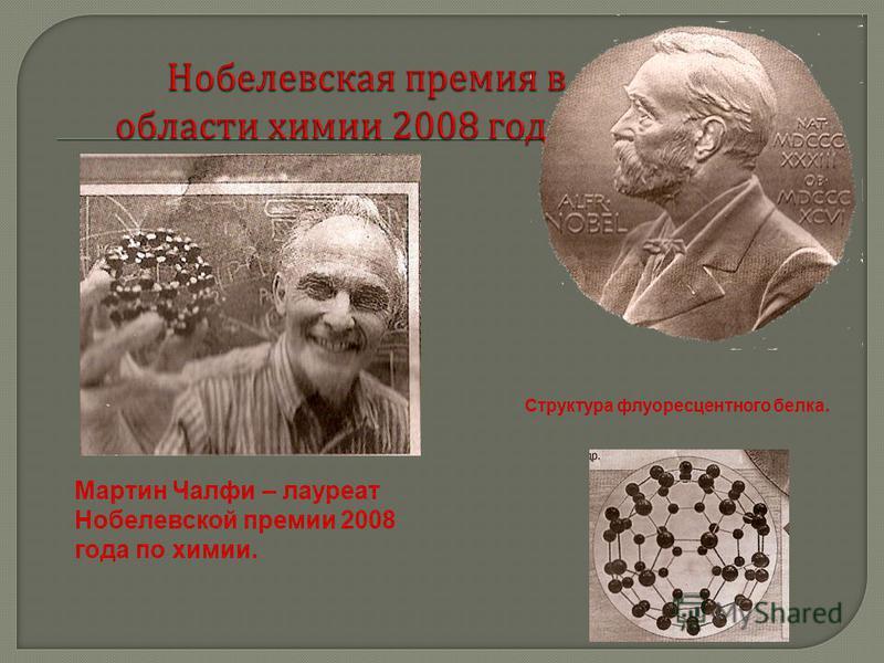 Мартин Чалфи – лауреат Нобелевской премии 2008 года по химии. Структура флуоресцентного белка.