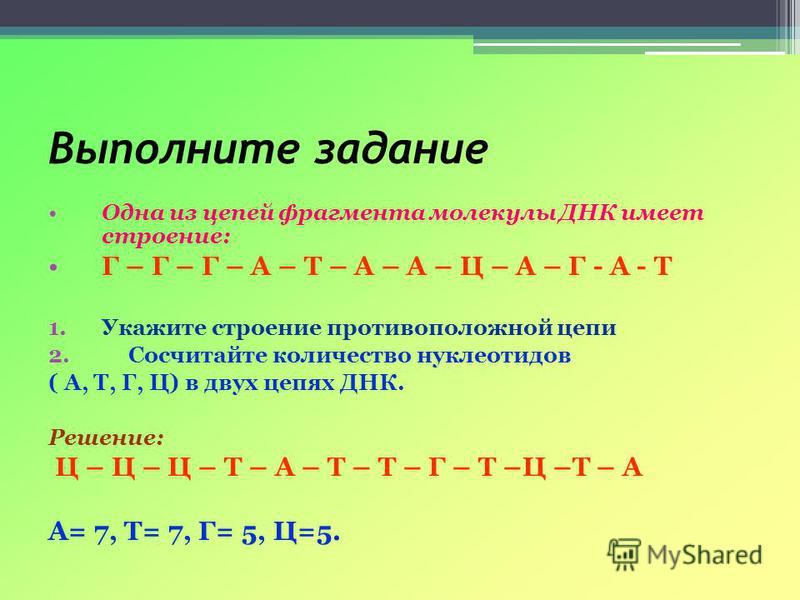 Выполните задание Одна из цепей фрагмента молекулы ДНК имеет строение: Г – Г – Г – А – Т – А – А – Ц – А – Г - А - Т 1. Укажите строение противоположной цепи 2. Сосчитайте количество нуклеотидов ( А, Т, Г, Ц) в двух цепях ДНК. Решение: Ц – Ц – Ц – Т