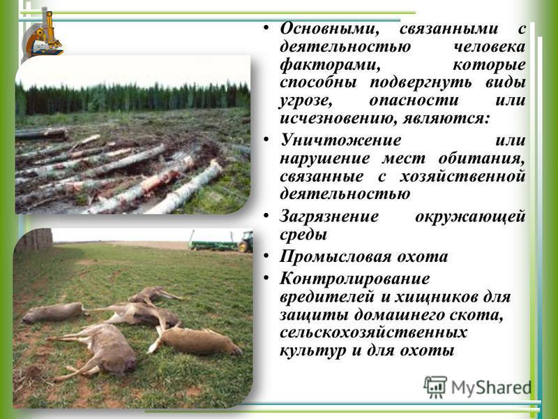 Основными, связанными с деятельностью человека факторами, которые способны подвергнуть виды угрозе, опасности или исчезновению, являются: Уничтожение или нарушение мест обитания, связанные с хозяйственной деятельностью Загрязнение окружающей среды Пр