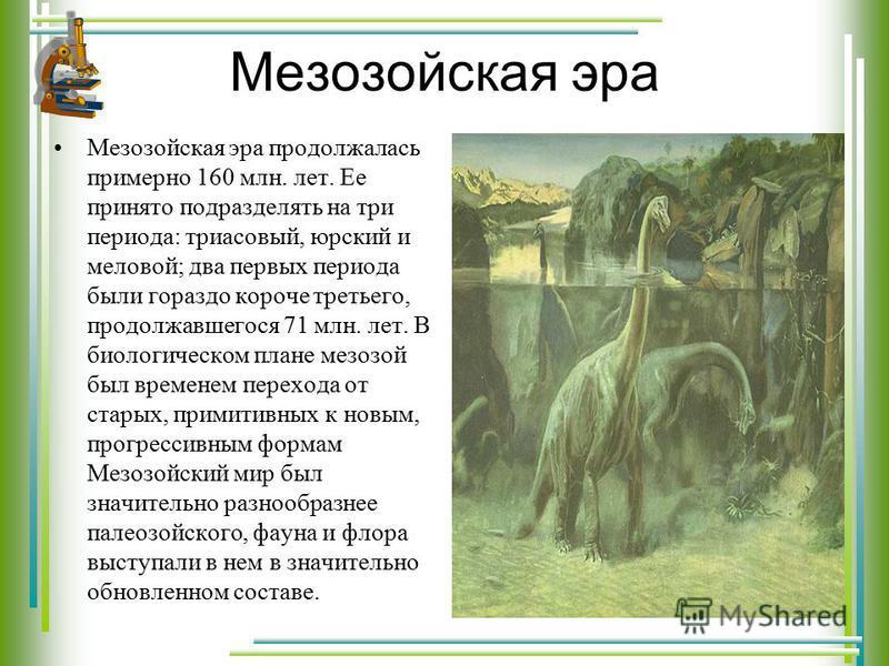 Мезозойская эра Мезозойская эра продолжалась примерно 160 млн. лет. Ее принято подразделять на три периода: триасовый, юрский и меловой; два первых периода были гораздо короче третьего, продолжавшегося 71 млн. лет. В биологическом плане мезозой был в