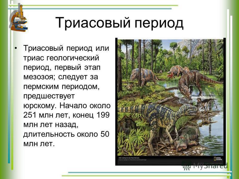 Триасовый период Триасовый период или триас геологический период, первый этап мезозоя; следует за пермским периодом, предшествует юрскому. Начало около 251 млн лет, конец 199 млн лет назад, длительность около 50 млн лет.