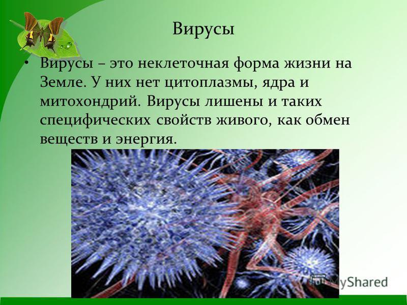 Вирусы Вирусы – это неклеточная форма жизни на Земле. У них нет цитоплазмы, ядра и митохондрий. Вирусы лишены и таких специфических свойств живого, как обмен веществ и энергия.