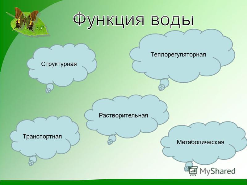 Растворительная Транспортная Метаболическая Структурная Теплорегуляторная