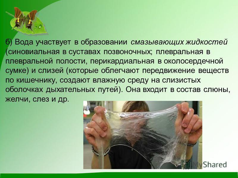 б) Вода участвует в образовании смазывающих жидкостей (синовиальная в суставах позвоночных; плевральная в плевральной полости, перикардиальная в околосердечной сумке) и слизей (которые облегчают передвижение веществ по кишечнику, создают влажную сред