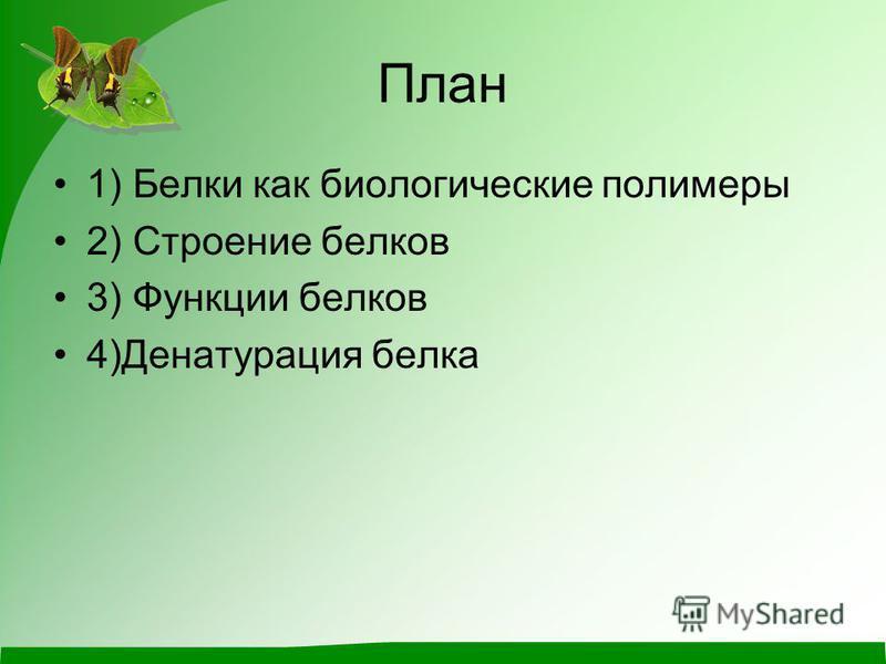 План 1) Белки как биологические полимеры 2) Строение белков 3) Функции белков 4)Денатурация белка