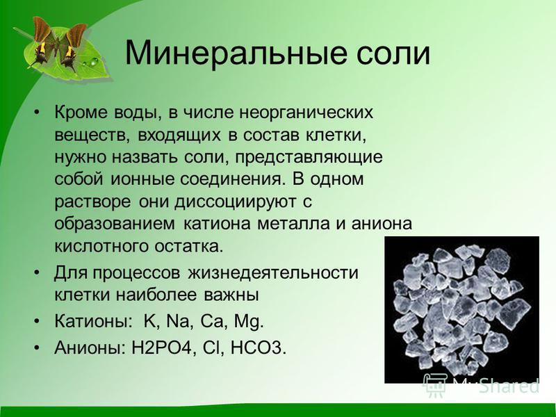 Минеральные соли Кроме воды, в числе неорганических веществ, входящих в состав клетки, нужно назвать соли, представляющие собой ионные соединения. В одном растворе они диссоциируют с образованием катиона металла и аниона кислотного остатка. Для проце