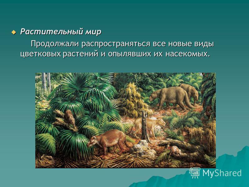 Растительный мир Растительный мир Продолжали распространяться все новые виды цветковых растений и опылявших их насекомых. Продолжали распространяться все новые виды цветковых растений и опылявших их насекомых.