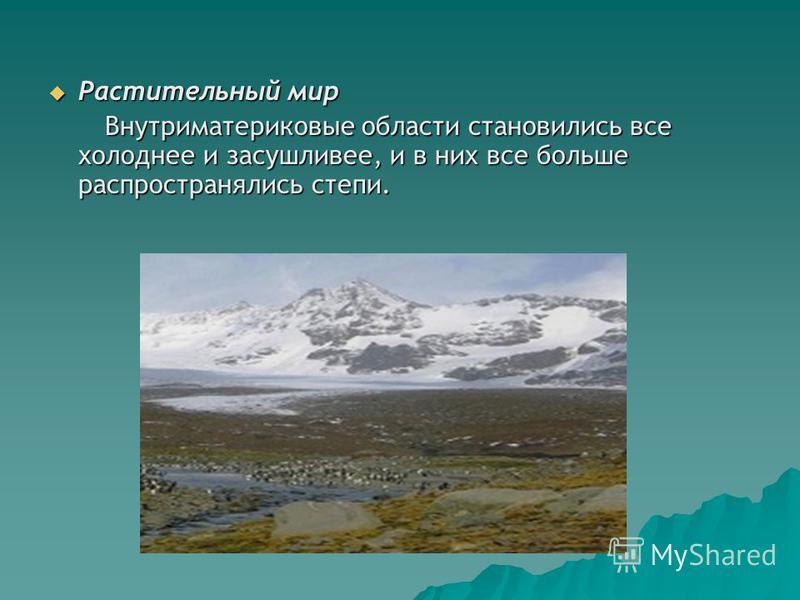 Растительный мир Растительный мир Внутриматериковые области становились все холоднее и засушливее, и в них все больше распространялись степи. Внутриматериковые области становились все холоднее и засушливее, и в них все больше распространялись степи.