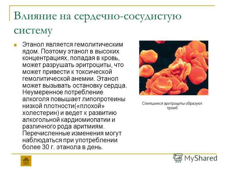 Влияние на сердечно-сосудистую систему Этанол является гемолитическим ядом. Поэтому этанол в высоких концентрациях, попадая в кровь, может разрушать эритроциты, что может привести к токсической гемолитической анемии. Этанол может вызывать остановку с