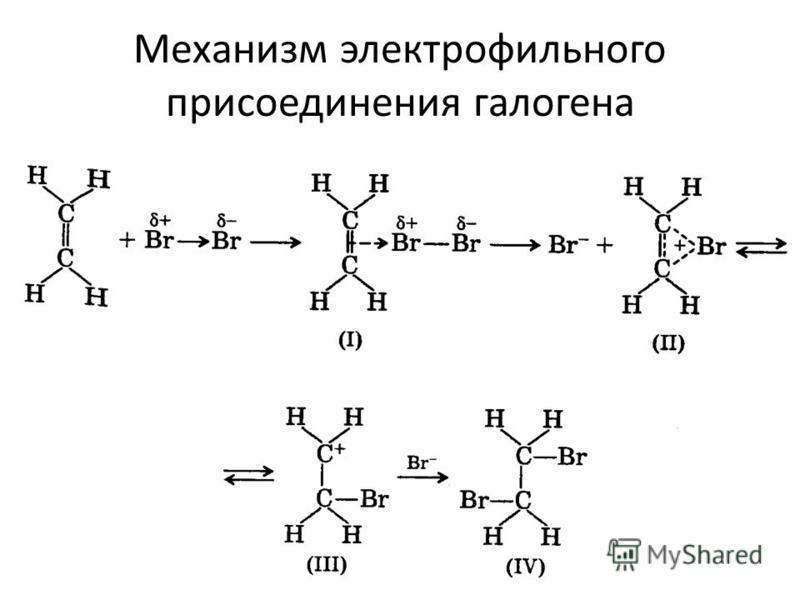 Механизм электрофильного присоединения галогена