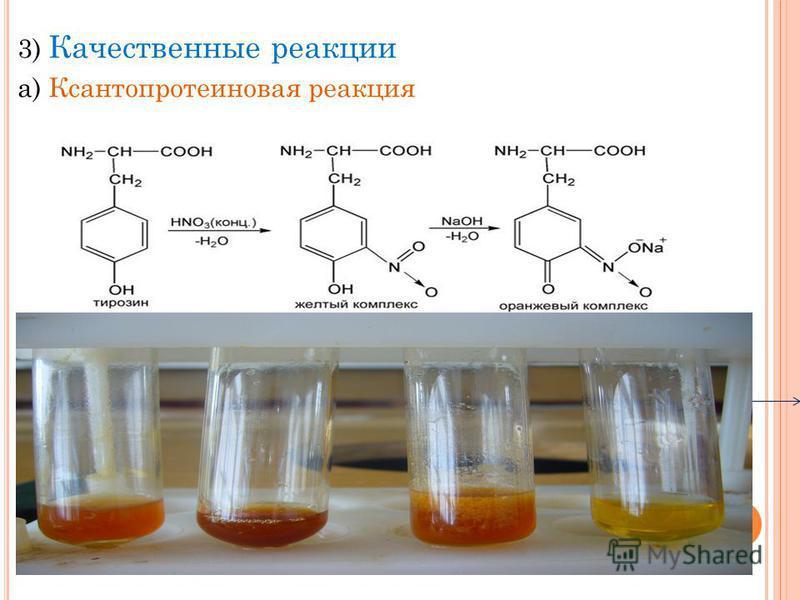 3) Качественные реакции а) Ксантопротеиновая реакция Белок+ конц. азотная кислота Желтое окрашивание+ гидроксид натрия оранжевое окрашивание