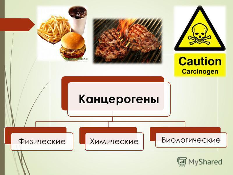 Канцерогены Физические Химические Биологические