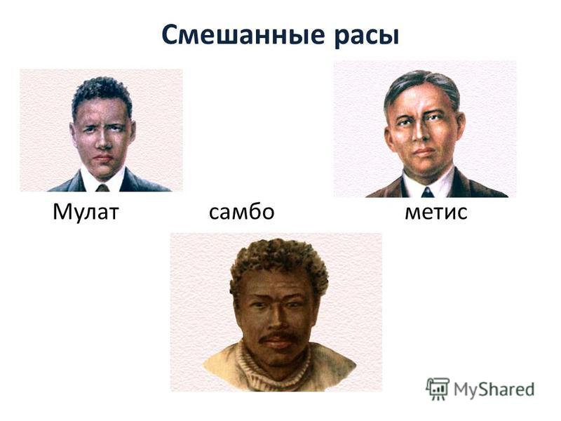Смешанные расы Мулат самбо метис