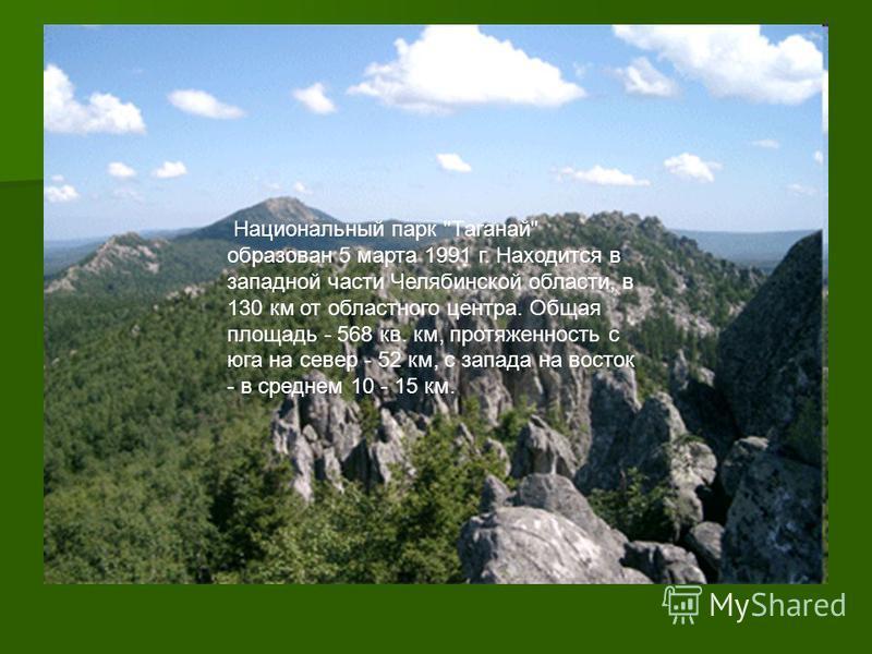 Национальный парк Таганай образован 5 марта 1991 г. Находится в западной части Челябинской области, в 130 км от областного центра. Общая площадь - 568 кв. км, протяженность с юга на север - 52 км, с запада на восток - в среднем 10 - 15 км.