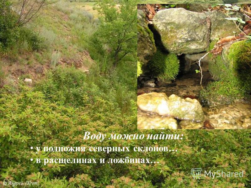 Воду можно найти: у подножия северных склонов… в расщелинах и ложбинах…