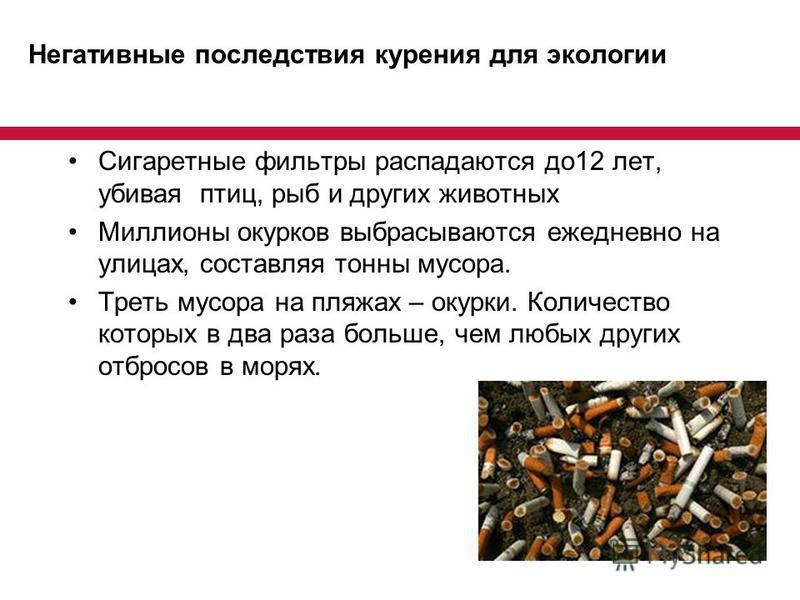Негативные последствия курения для экологии Сигаретные фильтры распадаются до 12 лет, убивая птиц, рыб и других животных Миллионы окурков выбрасываются ежедневно на улицах, составляя тонны мусора. Треть мусора на пляжах – окурки. Количество которых в