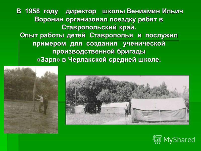 В 1958 году директор школы Вениамин Ильич Воронин организовал поездку ребят в Ставропольский край. Опыт работы детей Ставрополья и послужил примером для создания ученической производственной бригады «Заря» в Черлакской средней школе.