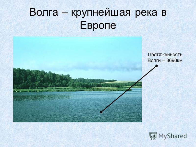 Волга – крупнейшая река в Европе Протяженность Волги – 3690 км