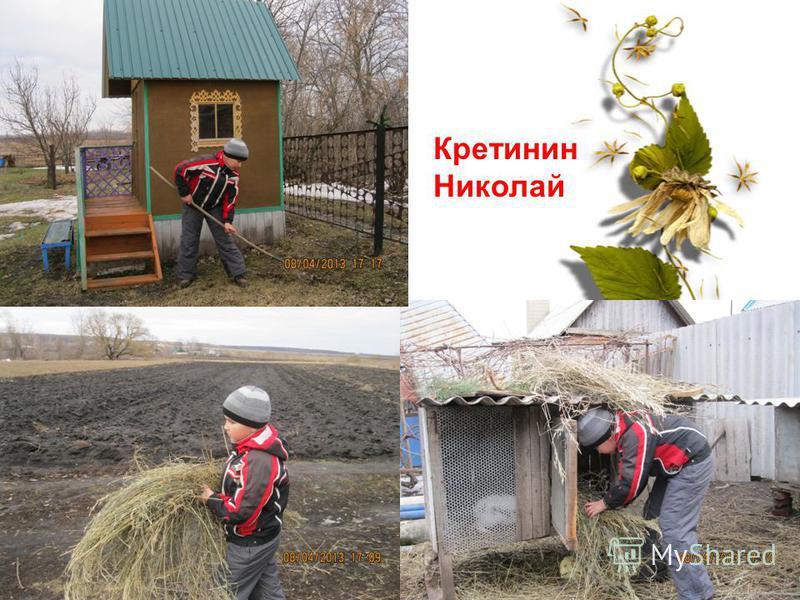 Кретинин Николай