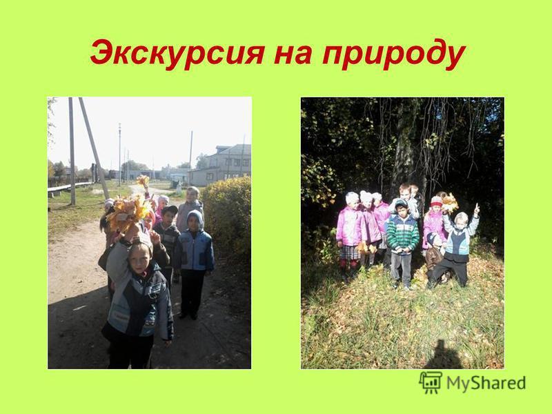 Экскурсия на природу