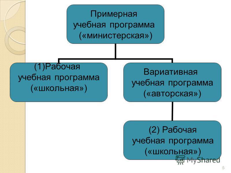 Примерная учебная программа («министерская») (1)Рабочая учебная программа («школьная») Вариативная учебная программа («авторская») 5 (2) Рабочая учебная программа («школьная»)