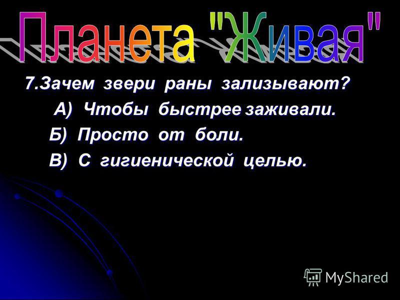 7. Зачем звери раны зализывают? А) Чтобы быстрее заживали. А) Чтобы быстрее заживали. Б) Просто от боли. Б) Просто от боли. В) С гигиенической целью. В) С гигиенической целью.