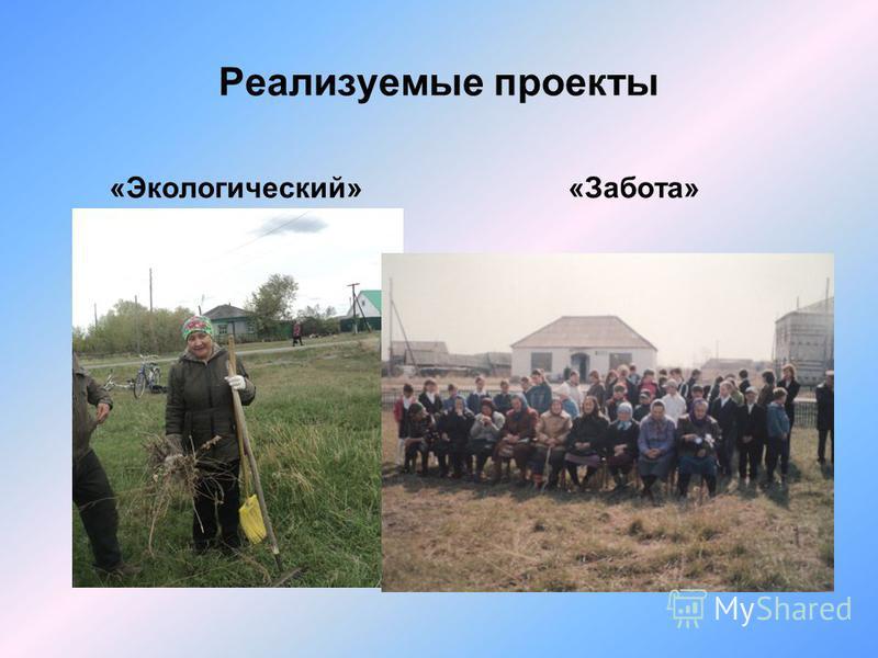 Реализуемые проекты «Экологический» «Забота»